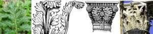 acanthus motief