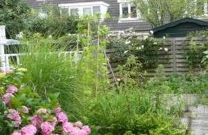 eetbare tuin 3