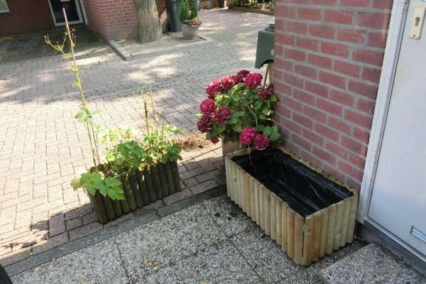 gratis plantenbak 10