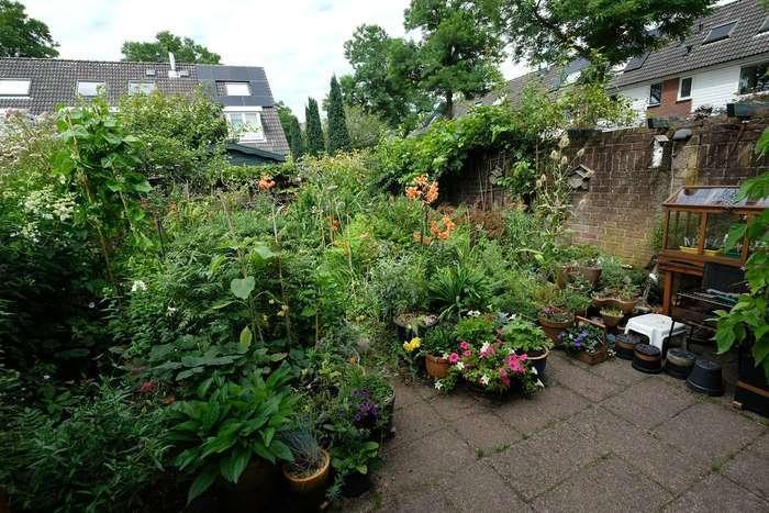 De oude tuin
