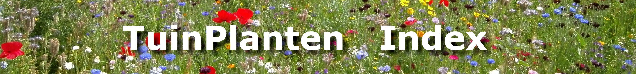 TuinPlanten Index